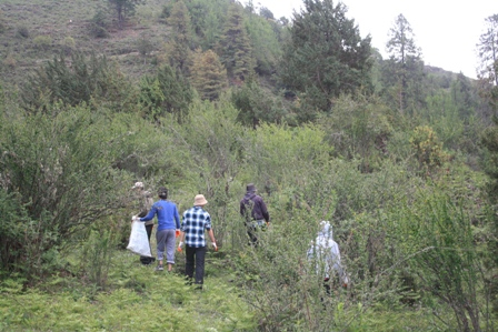 Team collecting garbage in Bhutan